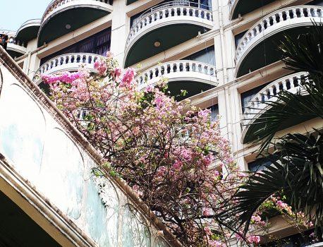ヤンゴンインターナショナルホテル社長の人生がすごそうだ